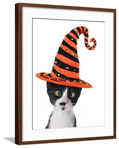 Cross Eyed Kitten Wearing A Halloween Witch Hat-Hannamariah-Framed Art Print