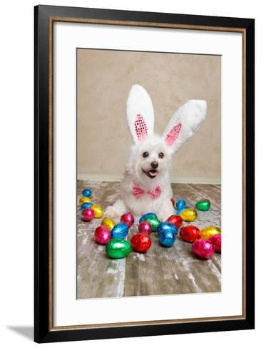 Easter Bunny Dog With Chocolate Easter Eggs-lovleah-Framed Art Print