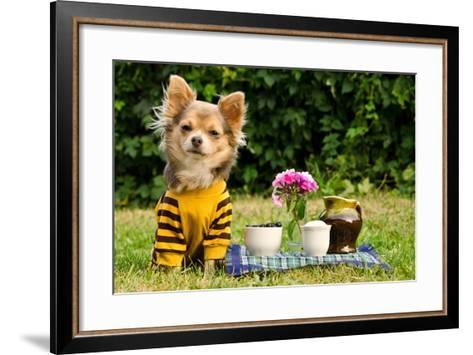 Cute Chihuahua Dog At The Picnic In Summer Garden-vitalytitov-Framed Art Print
