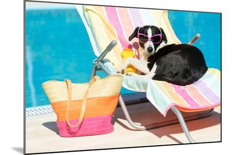 Funny Dog Sunbathing On Summer-Dirima-Mounted Photographic Print