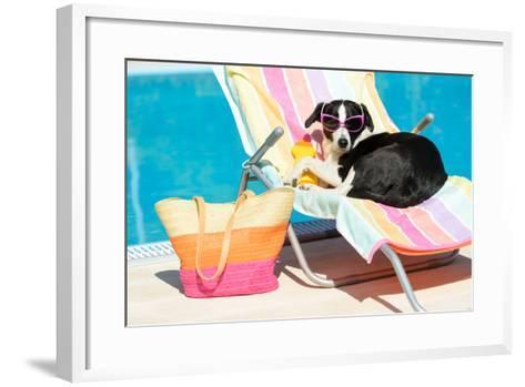 Funny Dog Sunbathing On Summer-Dirima-Framed Art Print