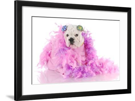 Spoiled Puppy-Willee Cole-Framed Art Print