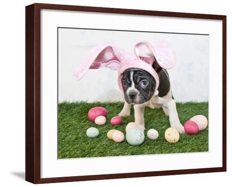 Easter Bunny Puppy- JStaley401-Framed Art Print