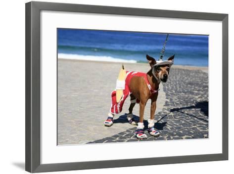 Ipanema Surfer Dog-OSTILL-Framed Art Print