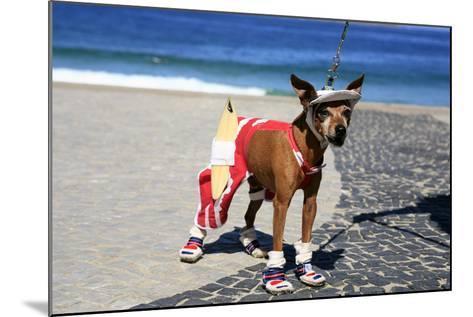 Ipanema Surfer Dog-OSTILL-Mounted Photographic Print