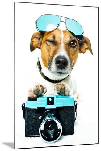 Dog Photo Camera-Javier Brosch-Mounted Photographic Print