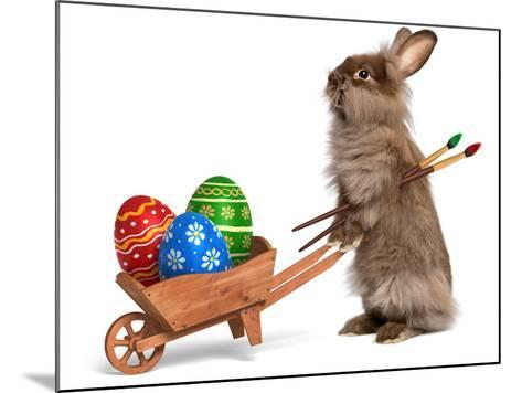 Funny Easter Bunny Rabbit With A Wheelbarrow And Some Easter Eggs-mdorottya-Mounted Photographic Print