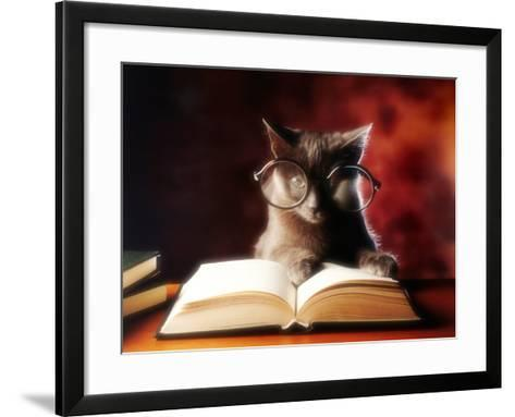 Gray Cat With Glasses Reading A Book-gila-Framed Art Print