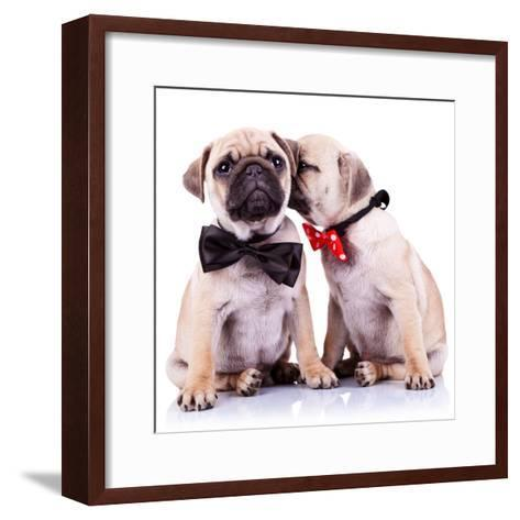 Lady Mops Puppy Whispering Something Or Kissing Its Gentleman Partner While Seated-Viorel Sima-Framed Art Print
