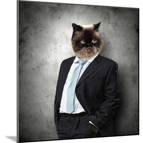 Funny Fluffy Cat In A Business Suit Businessman. Collage-Sergey Nivens-Mounted Photographic Print