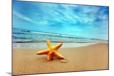 Starfish on the Beach-Michal Bednarek-Mounted Photographic Print