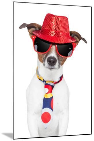 Crazy Silly Funny Dog Hat Glasses Tie-Javier Brosch-Mounted Photographic Print