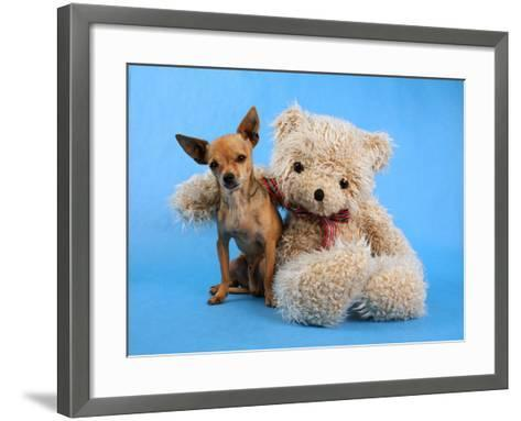 A Teddy Bear With His Arm Around A Tiny Chihuahua-graphicphoto-Framed Art Print