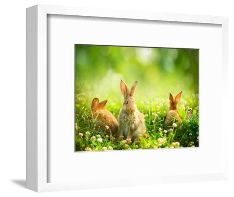 Rabbits-Subbotina Anna-Framed Art Print