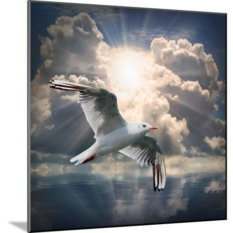 The Seagull Flying Over A Sea Against A Dramatic Sky. Background From Nature-Kletr-Mounted Photographic Print