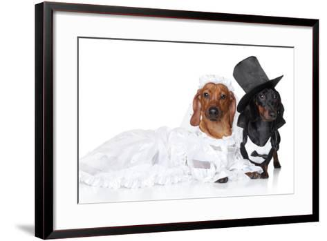 Fashionable Dachshund Dog Wedding-Jagodka-Framed Art Print