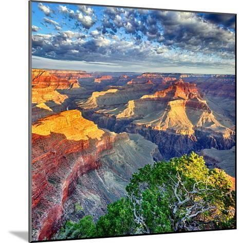 Morning Light at Grand Canyon-prochasson-Mounted Photographic Print