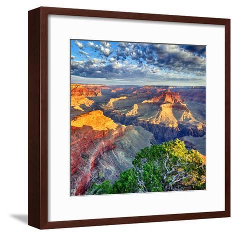 Morning Light at Grand Canyon-prochasson-Framed Art Print