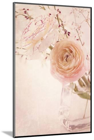 Ranunculus Flowers in a Vase-egal-Mounted Photographic Print