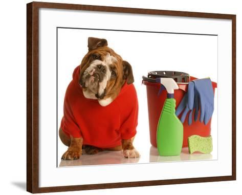Bulldog In Red Sweater With Cleaning Supplies-Willee Cole-Framed Art Print