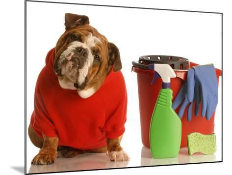 Bulldog In Red Sweater With Cleaning Supplies-Willee Cole-Mounted Photographic Print
