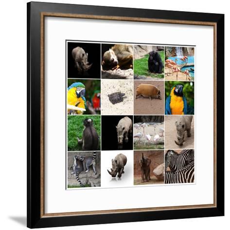 Various Wild Animals Composition-Aaron Amat-Framed Art Print
