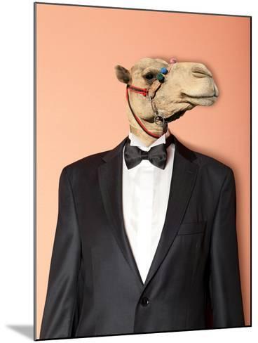 Camel-Andreyuu-Mounted Photographic Print