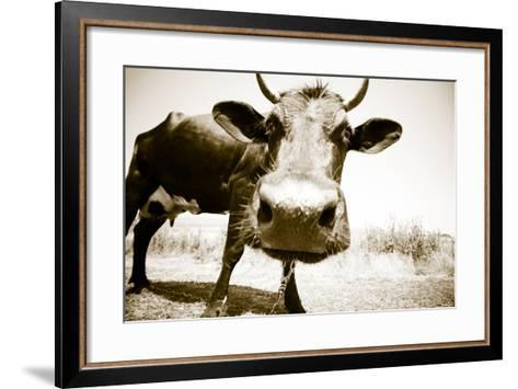 Funny Cow Stains-ongap-Framed Art Print