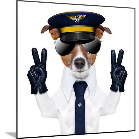 Pilot Dog-Javier Brosch-Mounted Photographic Print