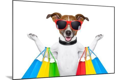 Shopping Dog-Javier Brosch-Mounted Photographic Print
