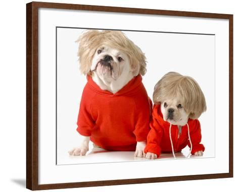 Cute Dogs Wearing Exercise Clothing - English and French Bulldogs-Willee Cole-Framed Art Print