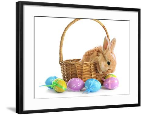 Fluffy Foxy Rabbit in Basket with Easter Eggs-Yastremska-Framed Art Print