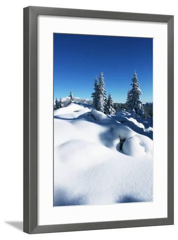 Winter Forest in Mountains-Andrushko Galyna-Framed Art Print
