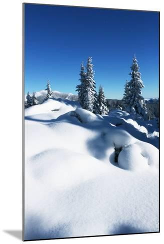 Winter Forest in Mountains-Andrushko Galyna-Mounted Photographic Print