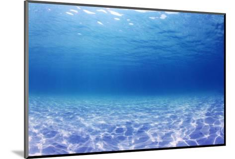 Underwater Background in the Sea-Rich Carey-Mounted Photographic Print