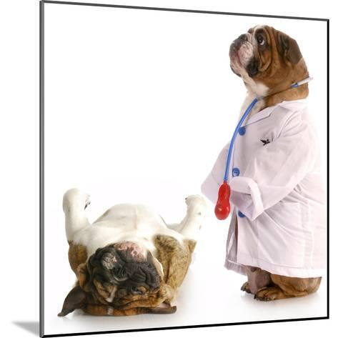 Veterinary Care-Willee Cole-Mounted Photographic Print