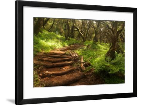 Forest Stairs--Framed Art Print