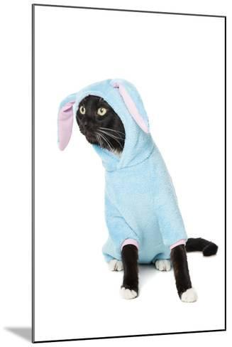 Black Cat in a Bunny Suit-vivienstock-Mounted Photographic Print