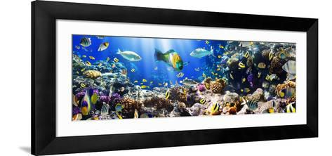 Photo of a Tropical Fish on a Coral Reef-Irochka-Framed Art Print