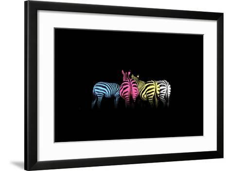 Cmyk Colored Zebras-Jakub Jirsak-Framed Art Print