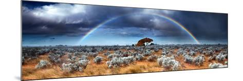 Rainbow in the Australian Desert-kwest19-Mounted Photographic Print