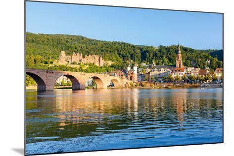 Bridge in Heidelberg, Germany-sborisov-Mounted Photographic Print