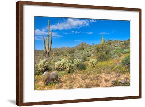 Blooming Desert-Anton Foltin-Framed Art Print