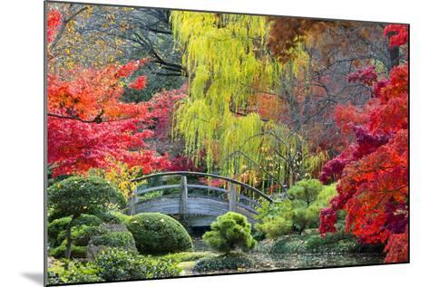 Moon Bridge in the Japanese Gardens-Dean Fikar-Mounted Photographic Print