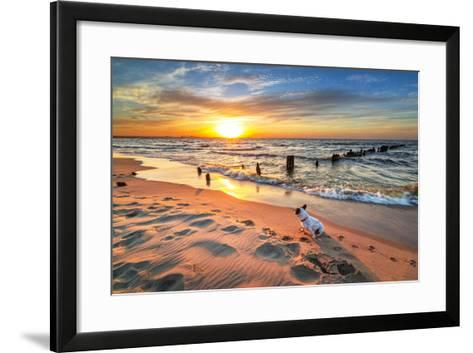 French Bulldog on the Beach at Sunset-Patryk Kosmider-Framed Art Print