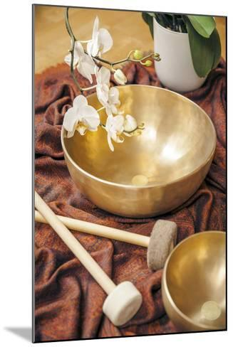An Image of Some Singing Bowls and a White Orchid-magann-Mounted Photographic Print