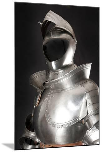 Armour-vis-Mounted Photographic Print