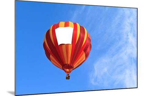 Hot Air Balloon-topseller-Mounted Photographic Print