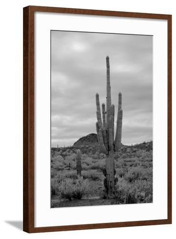 Desert Storm-diomedes66-Framed Art Print