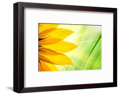 Sunflower Flower over over Green Floral Background-logoboom-Framed Art Print